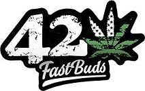 fastbuds.jpg