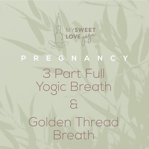 3 Part Yogic Breath & Golden Thread
