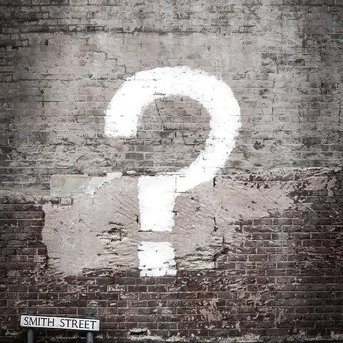 Custom Survey Questions