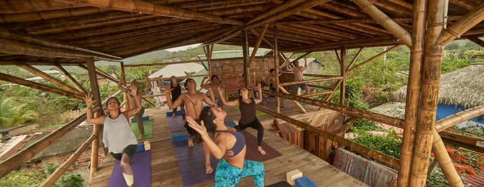 Lush yoga