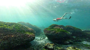 Snorkel beach trips ayampe ecuador