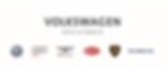 Volkswagen Group of America - logo (1).P