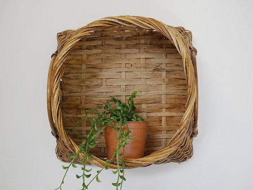 Wall Basket/ Plant Home