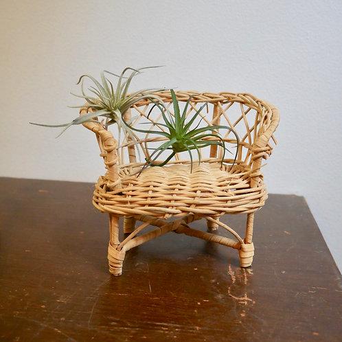 Mini Wicker Chair Plant Stand
