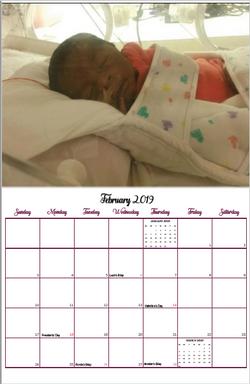Feb.PNG