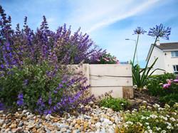 Cornish Coastal garden