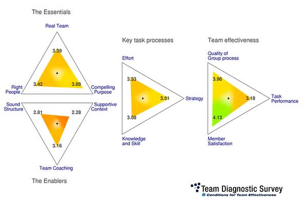 TDS Diagram.png