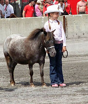 JR Wind Song , une jument miniature Appaloosa du Loosa-Ranch