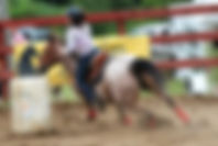 Peppys Tiny Jewel jument Quarter Horse vemdue par le Loosa-Ranch
