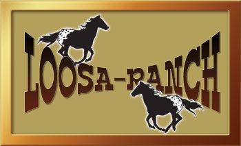 Loosa-Ranch : Qualité exeptionnelle, enregistrement, couleur garentie