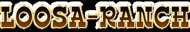 Loosa-Ranch, élevage de chevaux Appaloosa et Miniature et de chiens Doberman