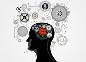 Kavramlarımız Muğlak Zihinlerimiz Karışık
