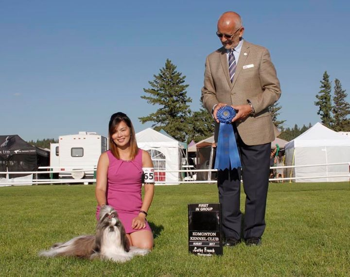Canadian Grand Champion Winterholme Dream after Dream