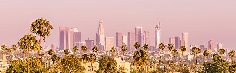 LA-skyline_banner.jpg
