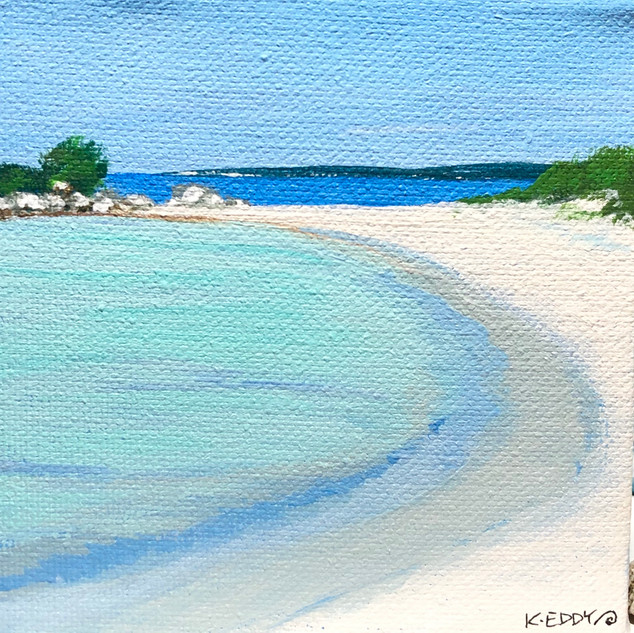 Carter's Beach Cove