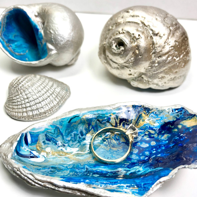 Silver Seashell Treasures