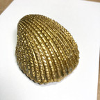Gold Seashell Treasure Large -Back