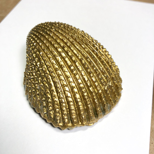 Gold Seashell Treasure Large -Back
