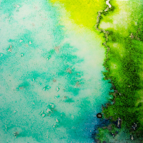 Coral Reef Dreams, Limited Edition#5/5