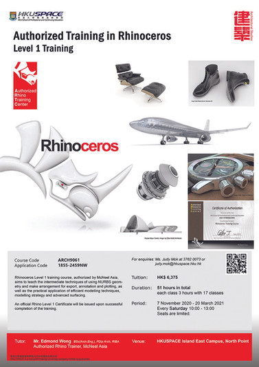Rhinoceros Level 1