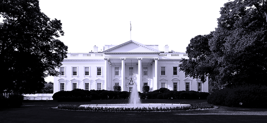 NLS White House_edited.png