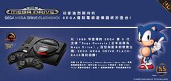SEGA for website.jpg
