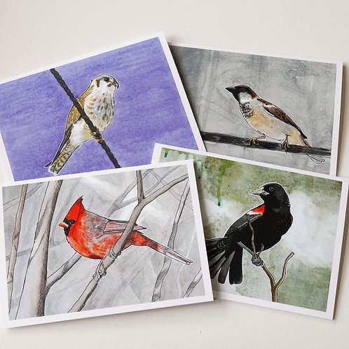 Chicago Birds Greeting Cards