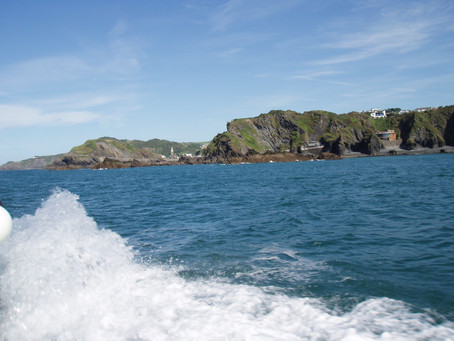 Diving with Seals in Lundy