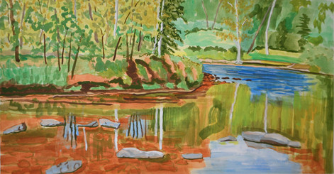 Lackawaxen River near Lock 31