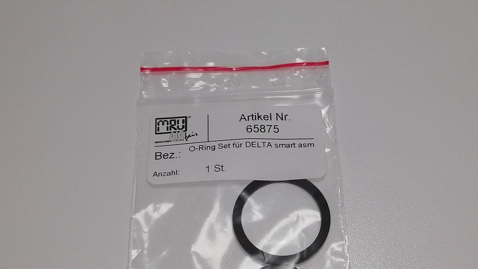 O-Ring Set für DELTAsmart