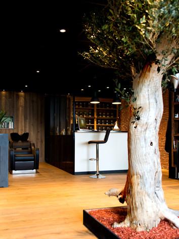 Espace coloration végétale du salon Naturel Coiffure
