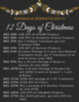 12 Days of Christmas.png