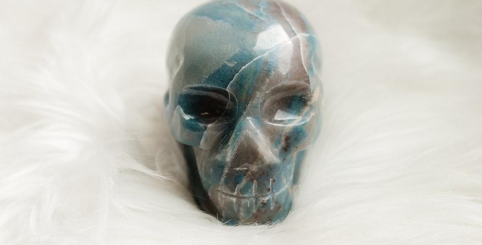 Trolleite Skull
