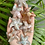 Thumbnail: Flower Agate Starfish