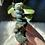 Thumbnail: Moss Agate Snake Dagger #2