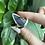 Thumbnail: Star Amethyst Ring