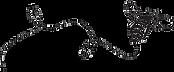 Sweet Melissa Pâtisserie, best bakery in New Jersey, best brunch in New Jersey, best breakfast in New Jersey, best lunch in New Jersey, bakery near clinton nj, bakery near lebanon nj, bakery near flemington, bakery near Annandale nj, bakery near pittstown nj, bakery near somerville nj, brunch, coffee, food, best brunch, coffee shop, comfort food, tea service, tea, tea house