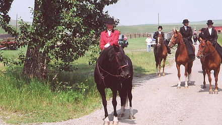 side saddle, sidesaddle, ride side saddle, ride aside, ride sidesaddle, how to ride side saddle, how to fit a side saddle, annual gathering, international side saddle organization, isso, charis cooper and peppi