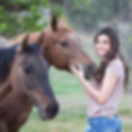 horses-girl-square.jpg