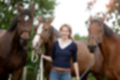 life coaching, coaching with horses, unbridled life coaching, unbridled coaching, corporate team building, corporate mentoring, leadership seminar, leadership building, business retreat, team building, team building retreat, unique team building, interactive team building, coporate team building near NYC, corporate team building in NJ