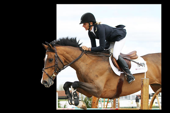 grand prix rider contact us horse horses excellence boarding NJ trainer training board green starting started difficult  Wellington Ocala New Jersey New York show coach catch ride