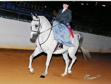 side saddle, sidesaddle, ride side saddle, ride aside, ride sidesaddle, how to ride side saddle, how to fit a side saddle, annual gathering, international side saddle organization, isso, kay griffiths and jmk blue bayou