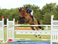 Rider Sponsorship Opportunities Hunter Farms Princeton Show Jumping PSJ grand prix rider photography videography photographer photographic professional NJ NY PA NJ NY PA Photography photographer videographer Princeton Show Jumping Best Horse Show website Creation Equestrian Marketing