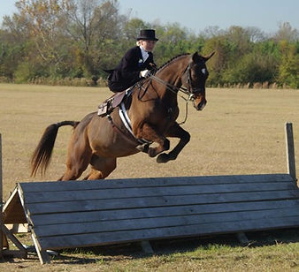 side saddle, sidesaddle, ride side saddle, ride aside, ride sidesaddle, how to ride side saddle, how to fit a side saddle, annual gathering, international side saddle organization, isso, Allison crews and a merry chase