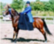 side saddle, sidesaddle, ride side saddle, ride aside, ride sidesaddle, how to ride side saddle, how to fit a side saddle, annual gathering, international side saddle organization, isso, saddleseat and gaited side saddle attire, side saddle attire