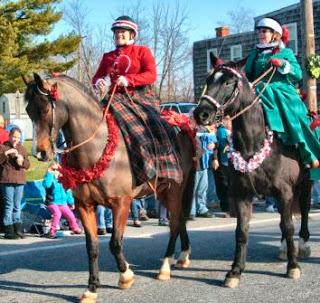 side saddle, sidesaddle, ride side s