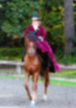 side saddle, sidesaddle, ride side saddle, ride aside, ride sidesaddle, how to ride side saddle, how to fit a side saddle, annual gathering, international side saddle organization, isso, larri of washington state, morgan side saddle, morgan aside