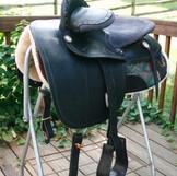Steele Convertable Side Saddle