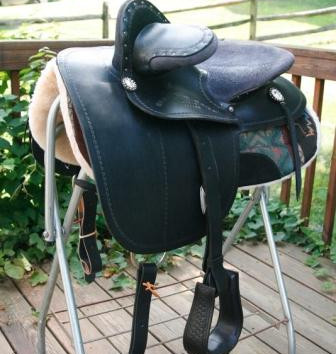 Steele Convertable Side Saddle