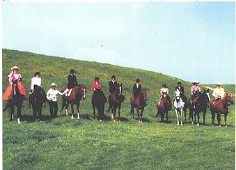 side saddle, canada, alberta, sidesaddle, aside riding, ride side saddle, ride sidesaddle, side saddle, sidesaddle, ride side saddle, ride aside, ride sidesaddle, how to ride side saddle, how to fit a side saddle, annual gathering, international side saddle organization, isso